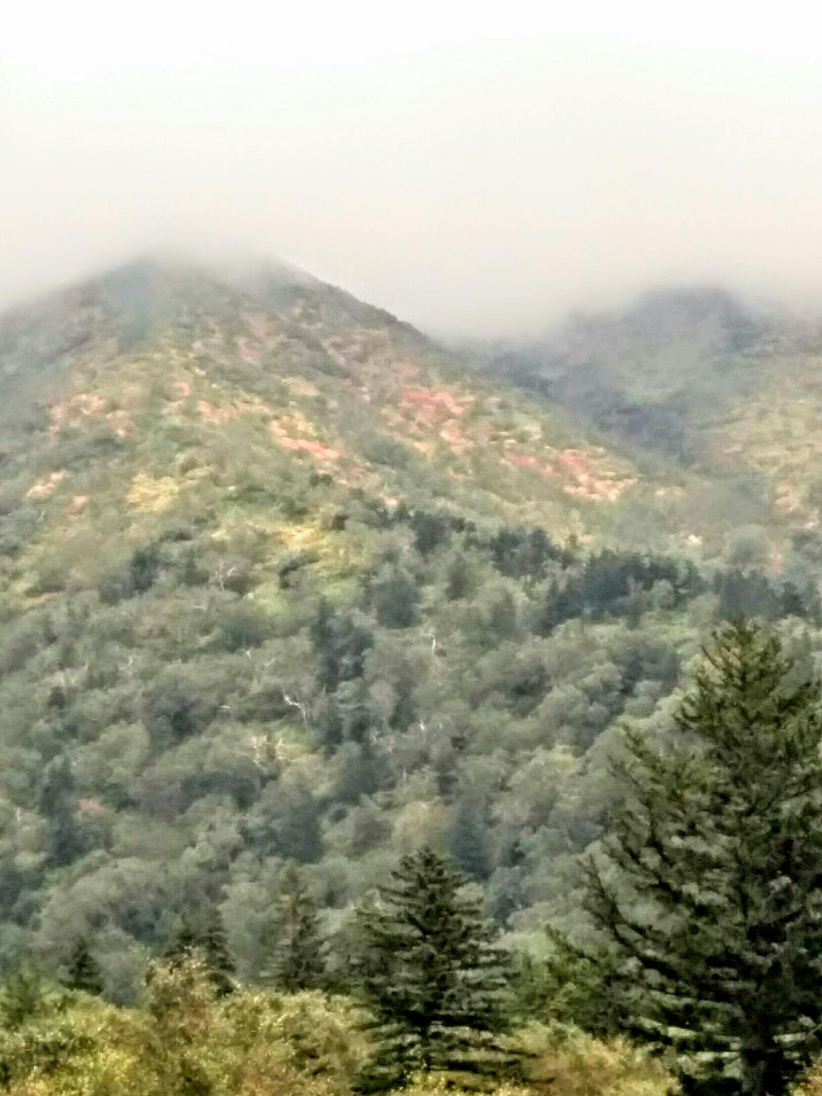 【上富良野】紅葉が始まった十勝連山とバーデン上富良野観光タクシー