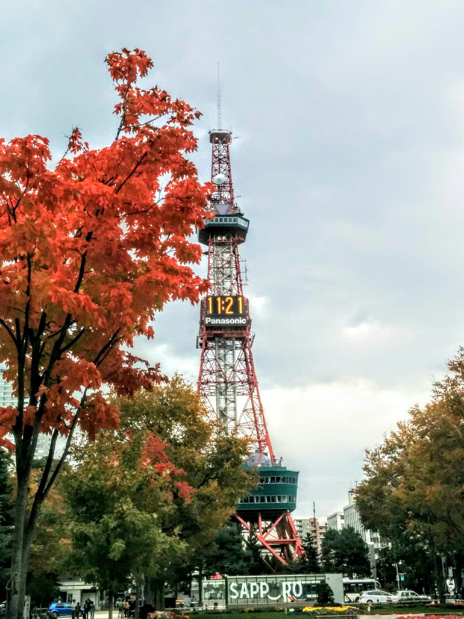 【札幌】秋のテレビ塔観光案内です。