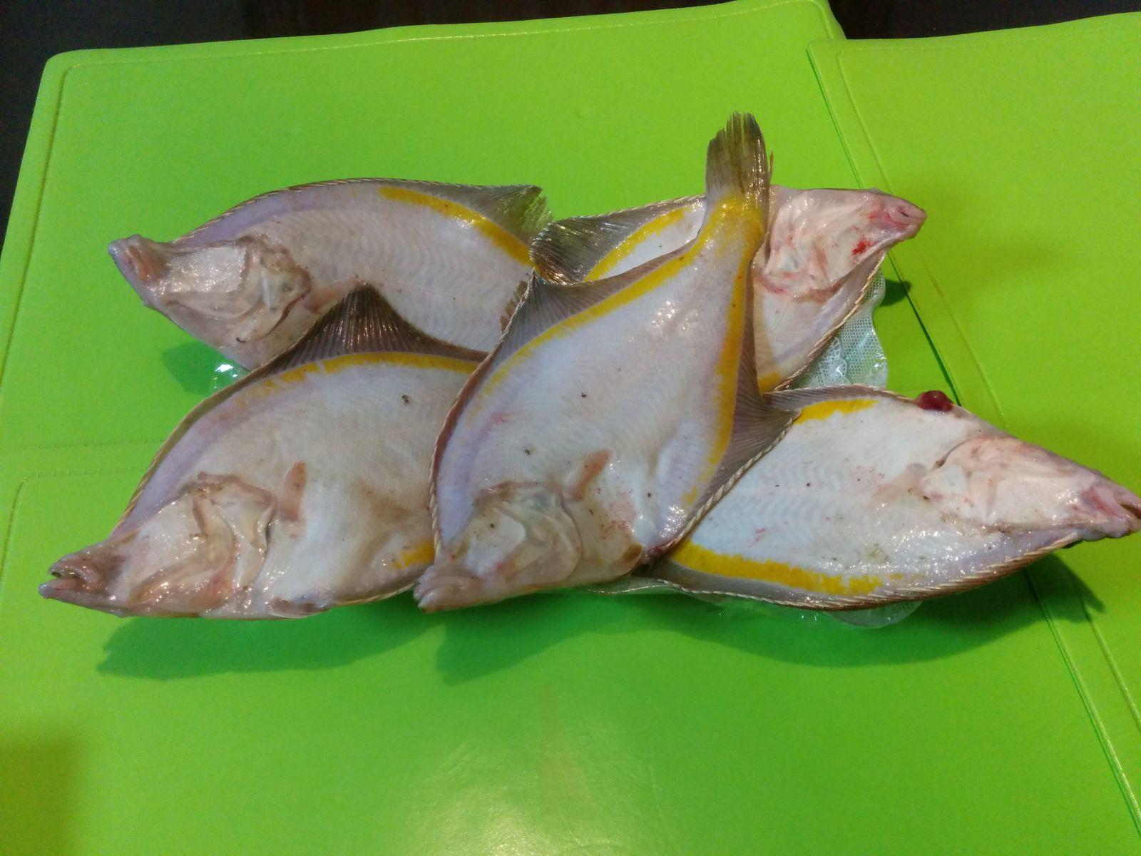 【北海道】北海道の魚・カレイ観光案内です。