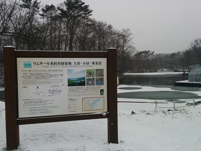 【大沼】冬の大沼公園観光案内です。