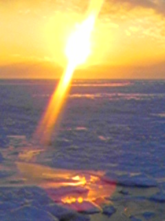 【冬の知床観光ジャンボタクシーでの流氷】オホーツク海流氷観光案内です。