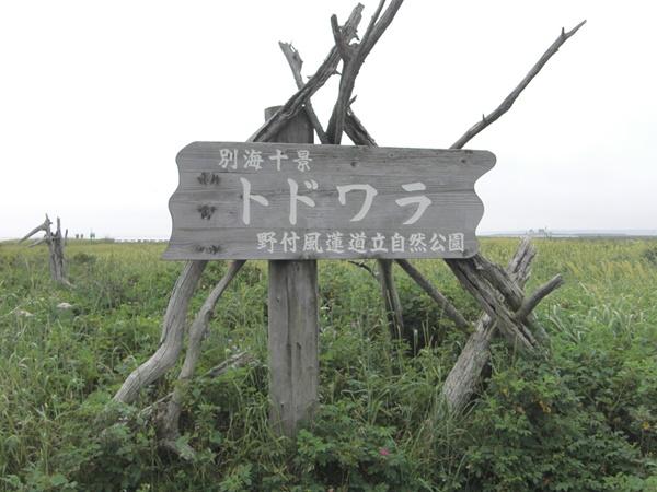 【別海町】野付半島・トドワラ観光案内です。