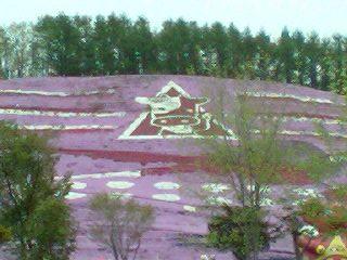【大空町東藻琴】大空町・東藻琴芝桜公園観光案内です。