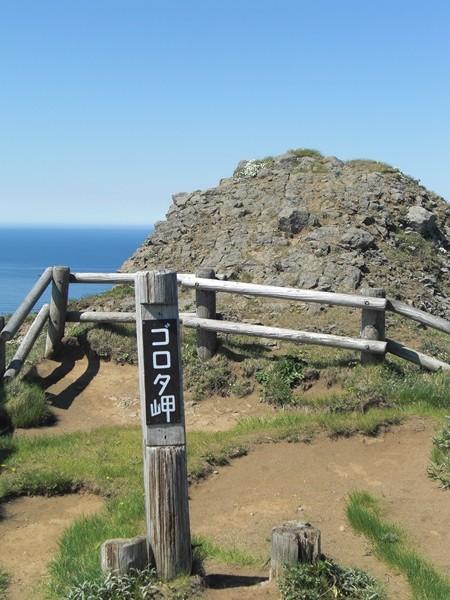【礼文島】礼文島ゴロタ岬観光案内です。