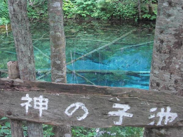 【清里町】神の子池観光案内です。