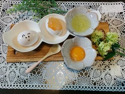 【小樽】濃厚卵掛けご飯グルメ案内です。