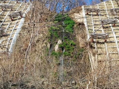 【小樽】手宮・幻の滝「御前水の滝」観光案内です。