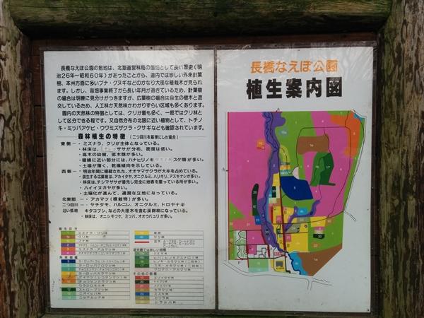 【小樽市】なえぼ公園ウォーキングです。