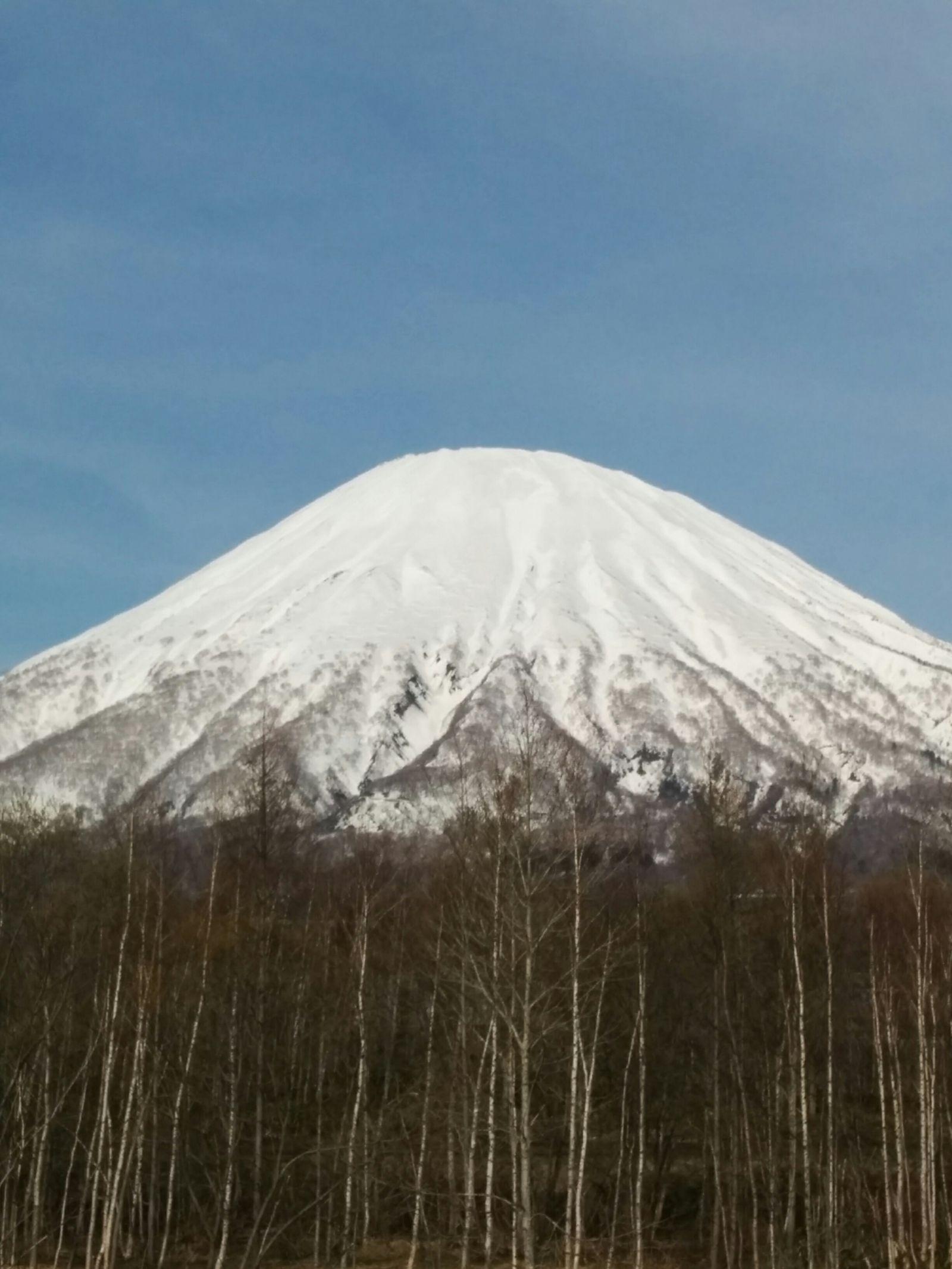 【京極町】羊蹄山写真スポット観光タクシー