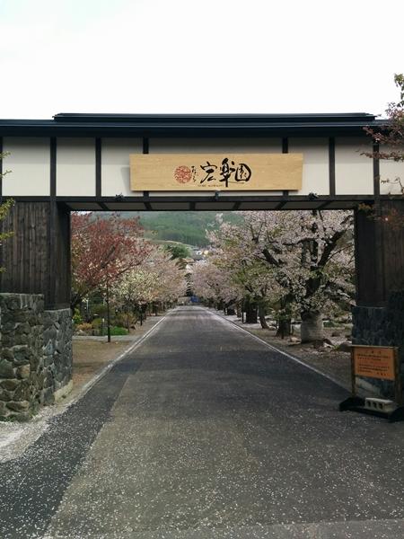 【小樽市】朝里川温泉・桜の宏楽園観光案内です。