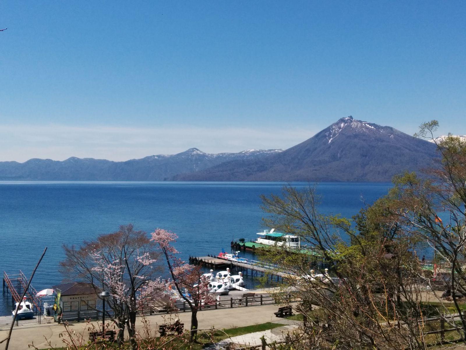 【支笏湖】桜の支笏湖観光案内です。