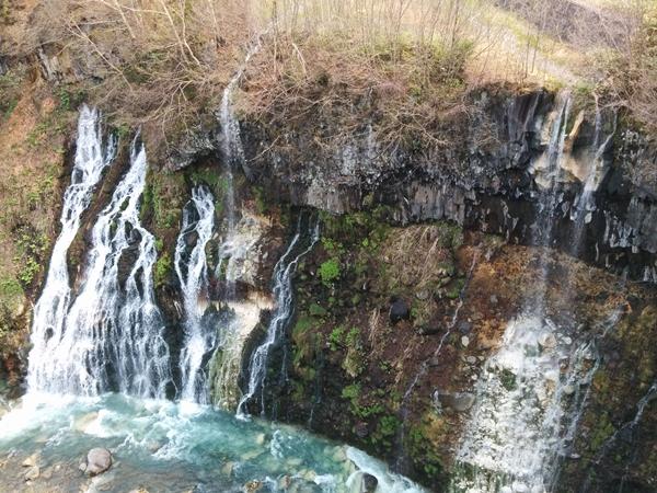 【美瑛町】白ひげの滝観光案内です。