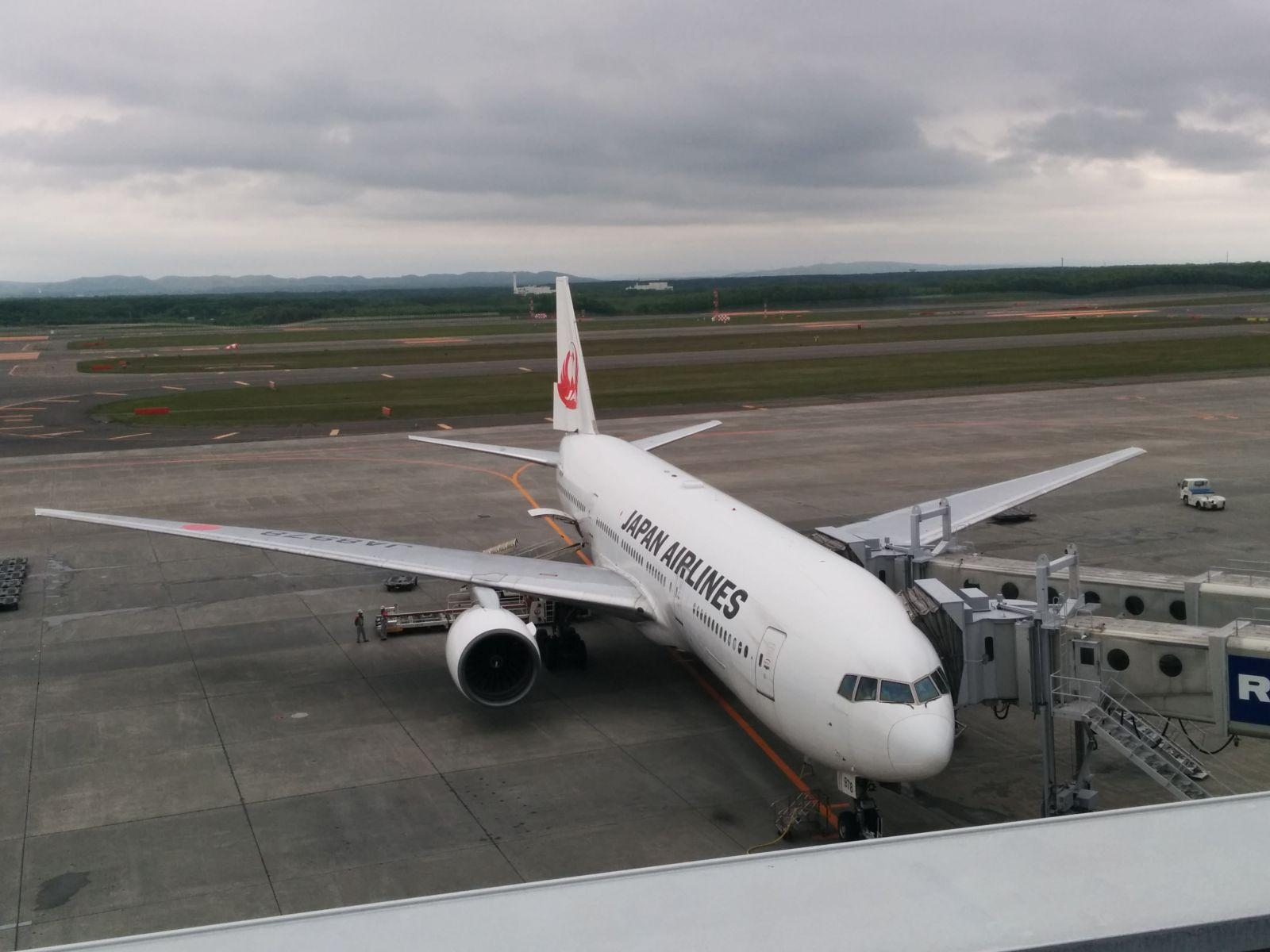 【新千歳空港】新緑の新千歳空港・展望デッキ観光写真