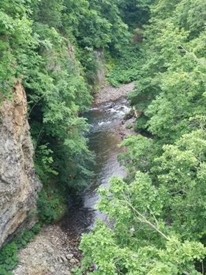 【定山渓】新緑の定山渓・時雨橋観光案内です。