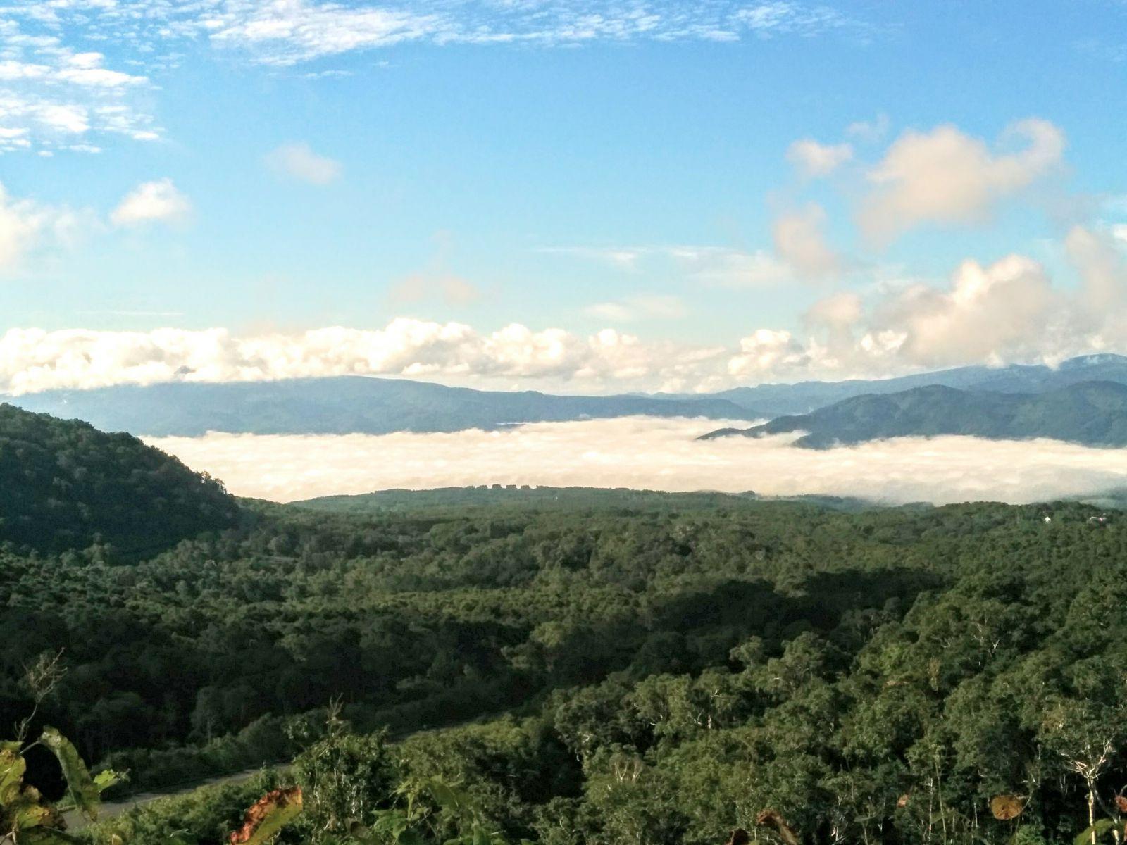 【ニセコ】蘭越「雲海」観光写真です。