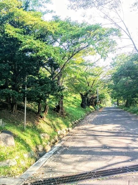 【小樽市】手宮公園観光案内です。