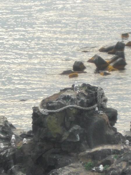【利尻島】人面岩観光案内です。