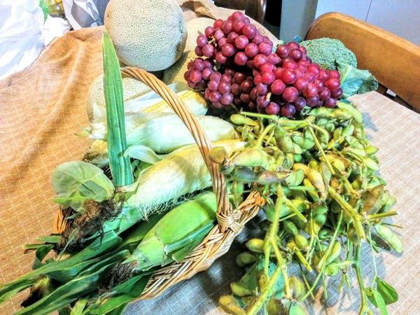 【キロロリゾート】赤井川村新鮮野菜農家直売所観光グルメ案内です。