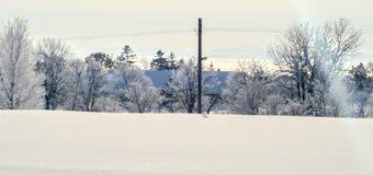 今朝の北竜町観光写真です。