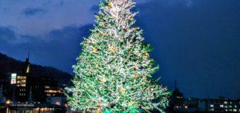 【函館】クリスマスファンタジー観光案内です。