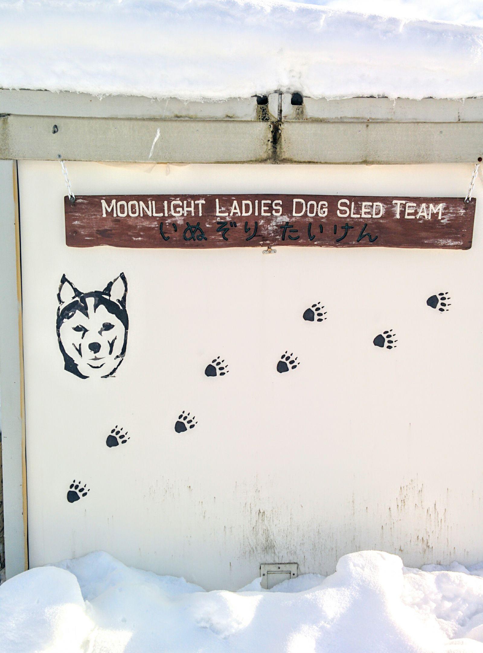 【鷹栖町】犬ぞり体験・ムーンライトレディース観光案内です。