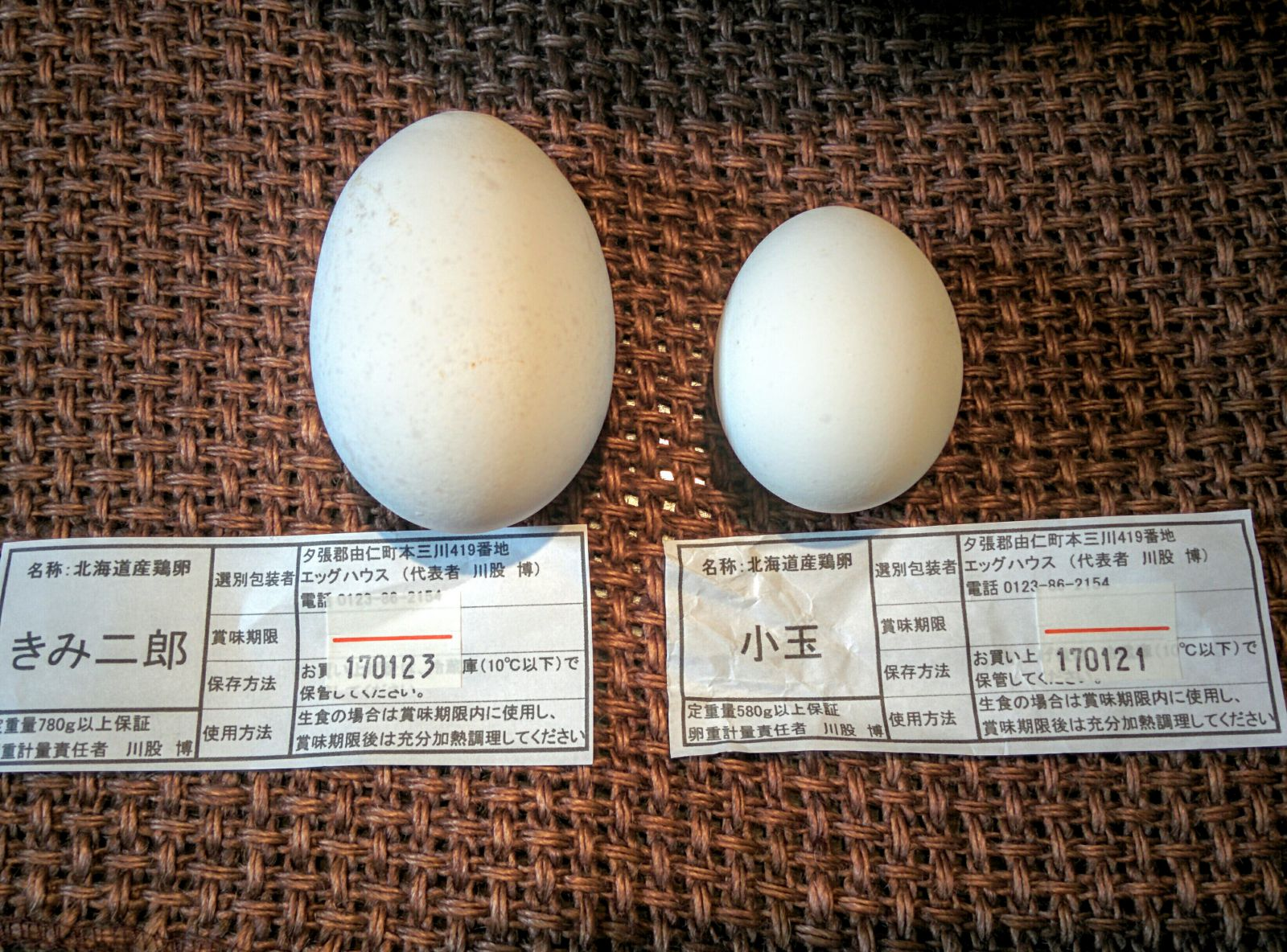 二卵性卵・きみ二郎と小玉卵です。