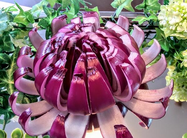 【小樽】紫タマネギ・アート写真です。