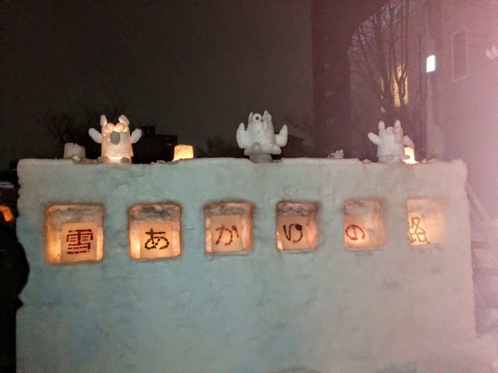 【小樽観光貸切タクシー】小樽雪あかりの路観光タクシー