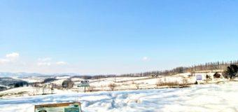 【美瑛】冬の三愛の丘展望公園観光タクシー