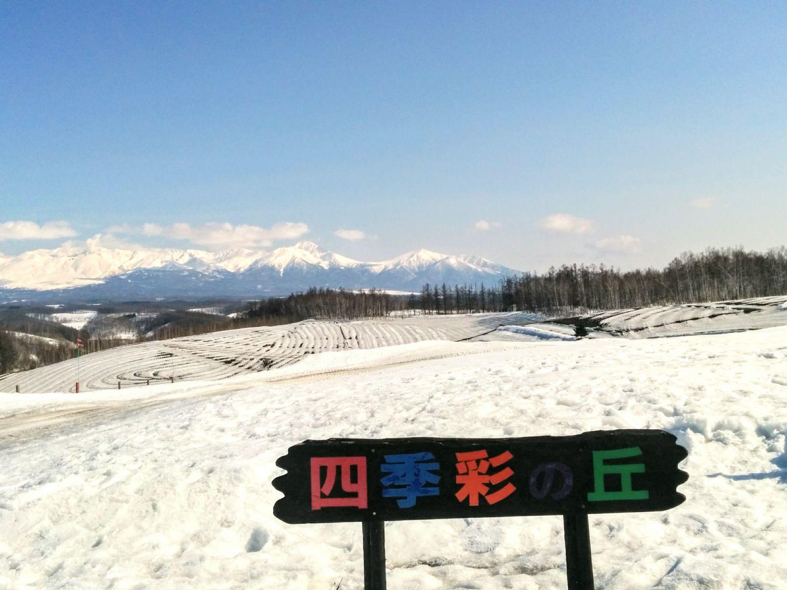 【美瑛】冬の四季彩の丘観光タクシー