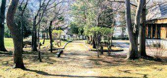 【小樽】なえぼ公園ウォーキングです。