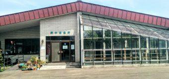 【小樽】手宮緑化植物園に行って来ました。