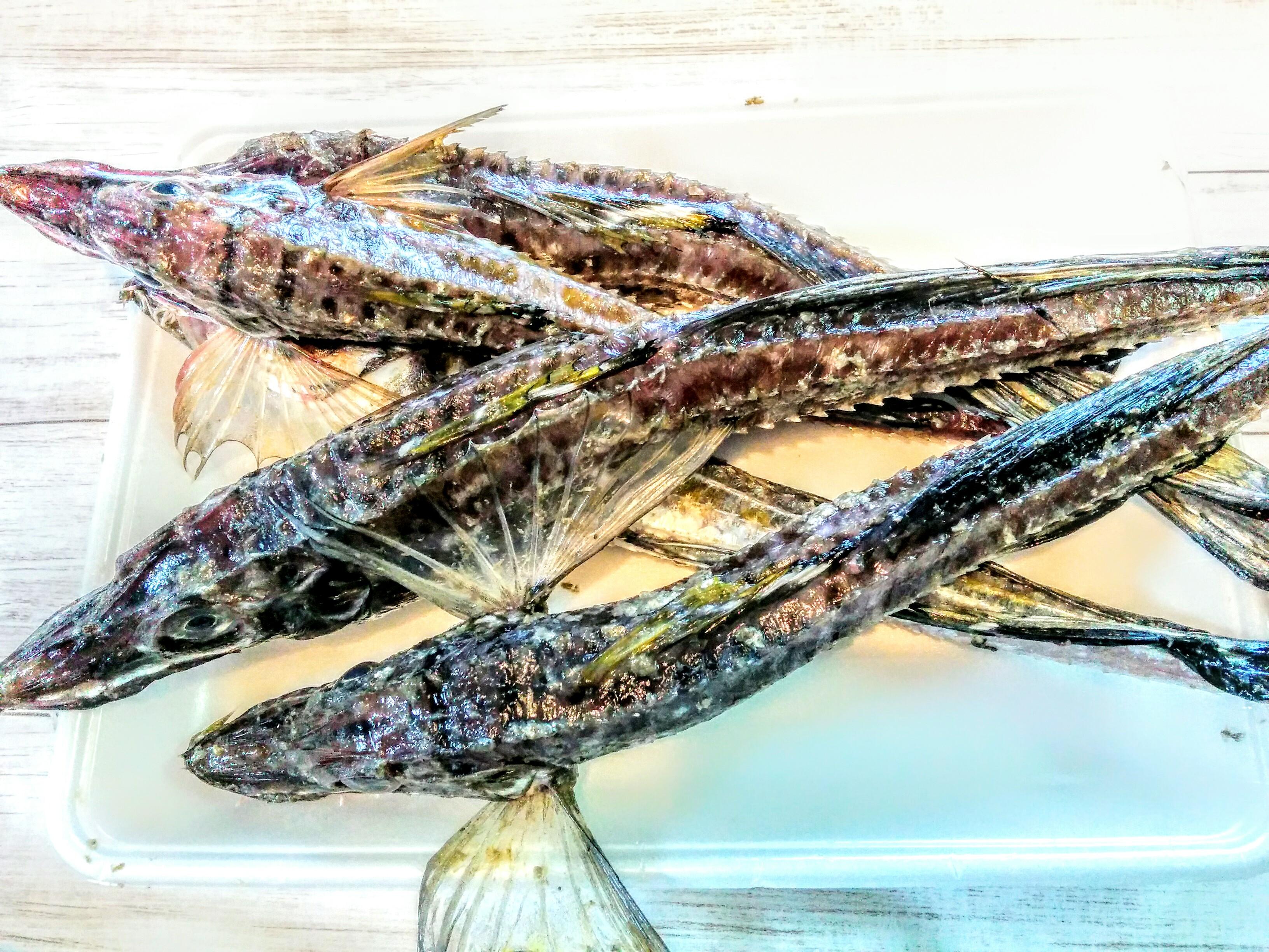 【北海道の魚】ハッカク(八角)の案内です。
