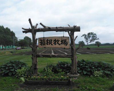 【千歳市】箱根牧場観光案内です。