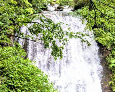 【小樽】小樽観光タクシーの魚留の滝観光案内です。