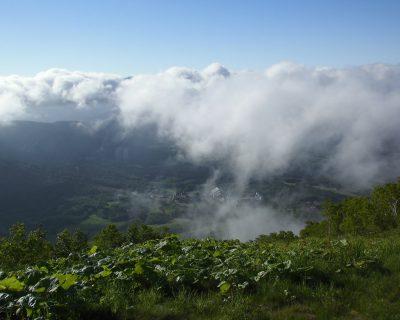 【トマムリゾート】星野リゾートトマム雲海テラス観光タクシー