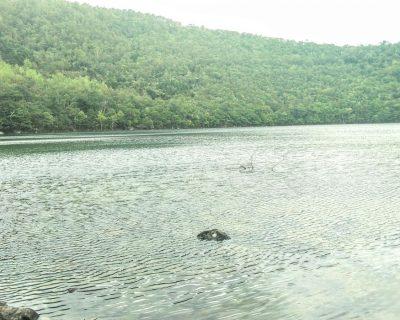 【登別】秘境「橘」湖・ウオーキングに行って来ました。