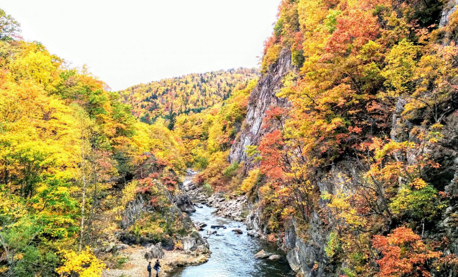 札幌市定山渓温泉二見吊橋からの紅葉写真です。