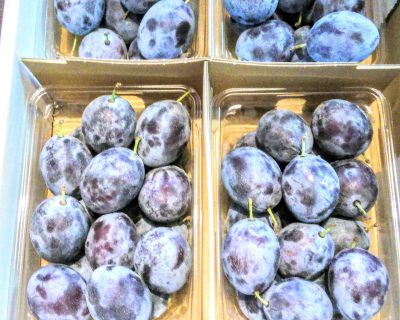 【小樽】お客さんからお土産にとプルーンを頂きました。