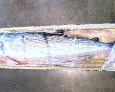 【小樽】襟裳から昆布と鮭が届きました。