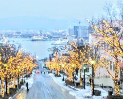 【函館】八幡坂観光案内です。