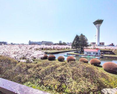 【函館】五稜郭公園観光案内です。