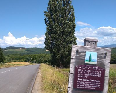 富良野~美瑛~旭川観光貸切タクシー高橋の美瑛町ケンとメリーのポプラの木観光案内です。