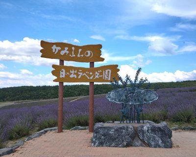 旭川・富良野・美瑛観光貸切タクシー高橋の上富良野町日の出公園観光案内です。
